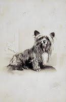 090904-dog