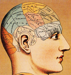 essays on phrenology