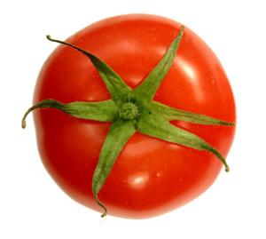 101020-tomato