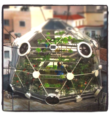 Image of the geodesic dome rooftop garden via http://www.conceptualdevices.com