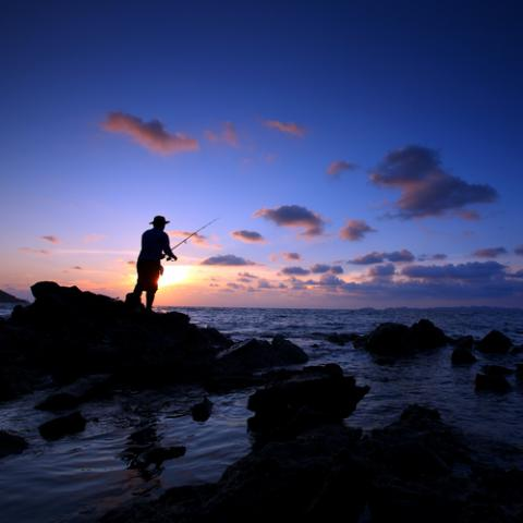 Fishing, isarescheewin / Shutterstock.com