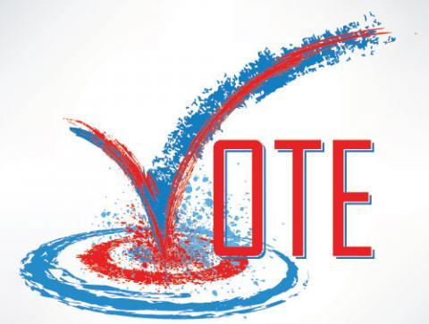 Vote image,  file404 / Shutterstock.com