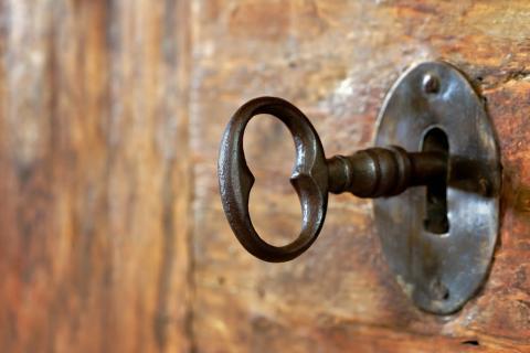 Anna-Mari West/Shutterstock.com