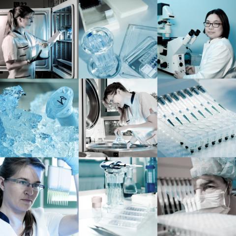 Scientists in a lab, anyaivanova / Shutterstock.com