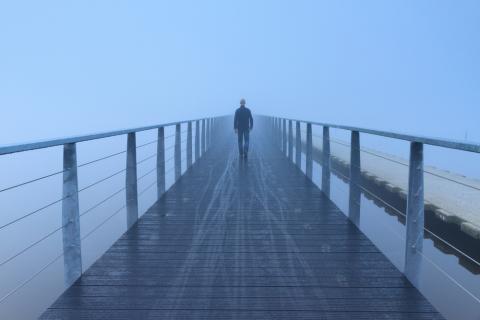 Image via Sander van der Werf/shutterstock.com