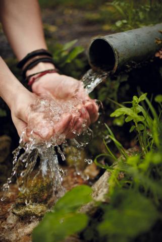 Wellspring, Oleh Slobodeniuk / Shutterstock.com