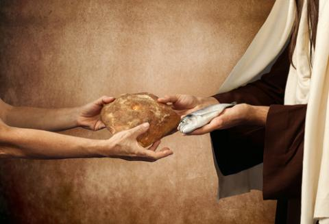 Generosity with loaves and fishes. Image courtesy Antonio Gravante/shutterstock.