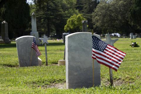 Flags placed at gravestones on Memorial Day, Sheila Fitzgerald /Shutterstock.com