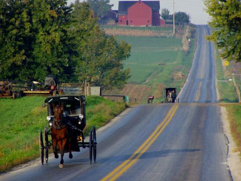 Amish buggies, Weldon Schloneger/Shutterstock.com