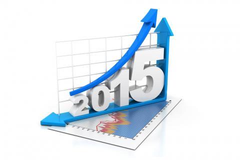 2015 growth graph. Image courtesy bluebay/shutterstock.com