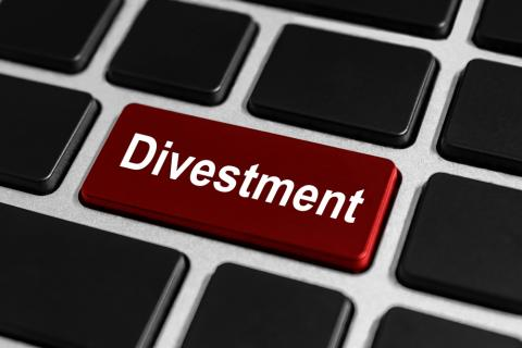 An option to divest. Image courtesy pichetw/shutterstock.com
