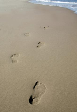 Footsteps in the sand, hpbdesign / Shutterstock.com