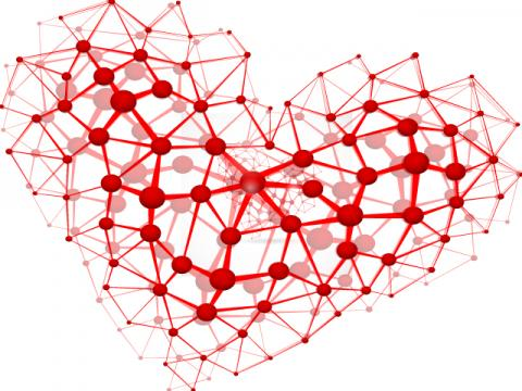 Interconnected heart, _Lonely_  / Shutterstock.com