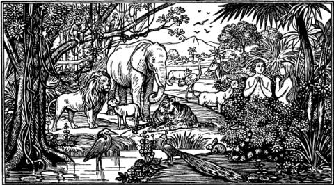 Garden of Eden, lynea / Shutterstock.com