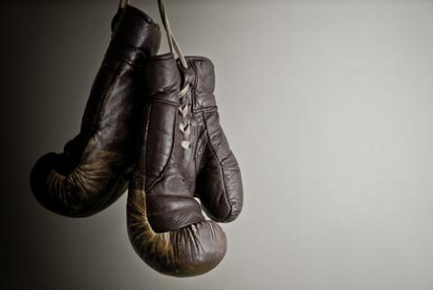 Brown boxing gloves, Csehak Szabolcs / Shutterstock.com