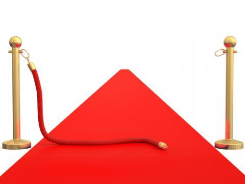 Red carpet image, disfera/ Shutterstock.com