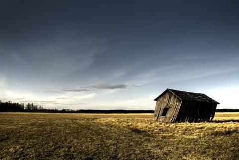 Andreas Gradin / Shutterstock