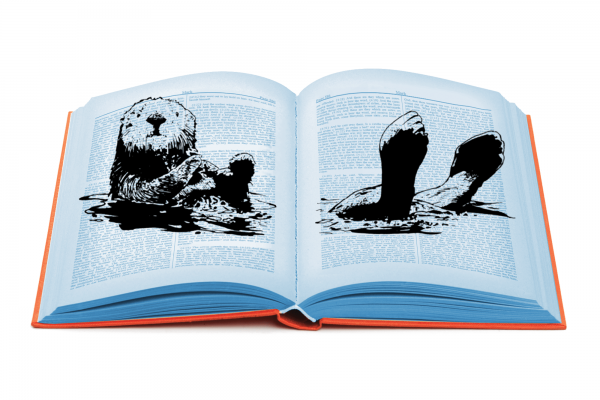 A drawing of an otter looking like it is floating on the pages of an open book.