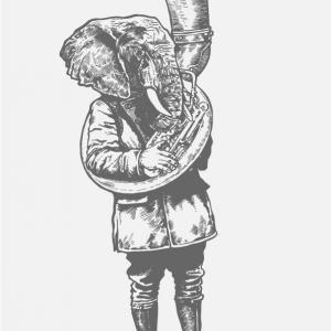 Elephant image via Shutterstock