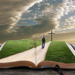 Photo courtesy Cardens Design/shutterstock.com.