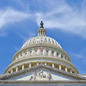 U.S. Capitol Building, Orhan Cam / Shutterstock.com
