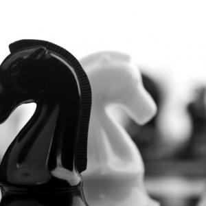Opposing chess pieces, Dima Sobko / Shutterstock.com