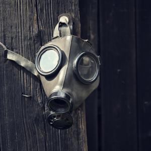 josefkubes / Shutterstock.com