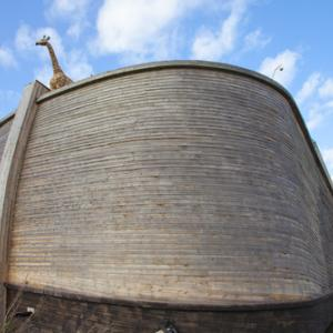 Replica of Noah's Ark in the Netherlands, Gigra / Shutterstock.com