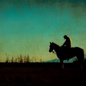 Image via CD_Photography/shutterstock.com