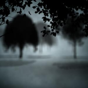 Dark gothic scene, wavebreakmedia / Shutterstock.com