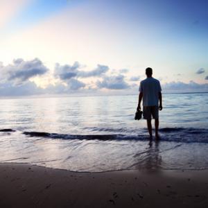 Walking on the beach, Iakov Kalinin / Shutterstock.com
