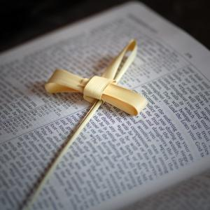 Palm Cross on Bible, Cheryl Casey/Shutterstock.com