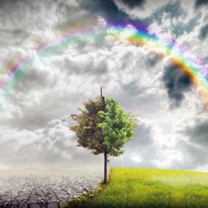 Climate change illustration, red-feniks / Shutterstock.com