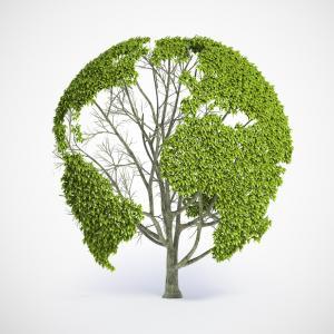 Image via Mopic/shutterstock.com