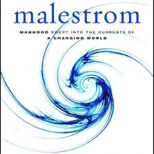 MalestromCover.jpg