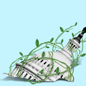 The dome of the Capitol being entangled by green vines.