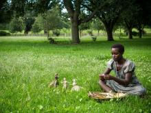 '12 Years a Slave' still, Fox Searchlight