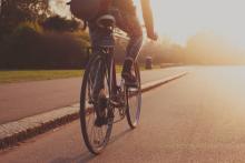 LoloStock / Shutterstock.com