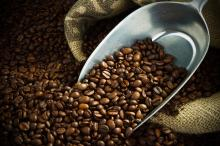 Coffee grounds. Image courtesy O.Bellini/shutterstock.com