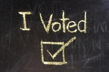 Voting illustration,  suwan reunintr / Shutterstock.com