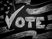 Voting illustration, B Calkins / Shutterstock.com