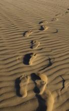 A single pair of footprints. Photo courtesy grebcha/shutterstock.com