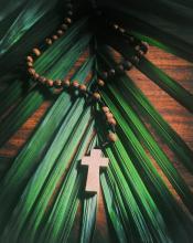 The cross and the palm frond. Image via Muskoka Stock Photos/shutterstock.com