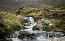 Irish countryside, Bildagentur Zoonar GmbH / Shutterstock.com