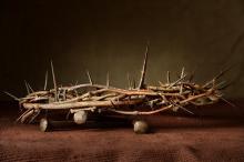 R. Gino Santa Maria / Shutterstock.com