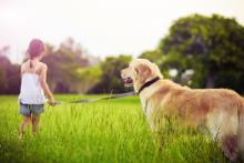 Girl with Golden Retriever photo, Martin Valigursky, Shutterstock.com