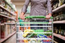Photo: Grocery shopping, Kzenon / Shutterstock.com