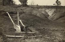 Everett Historical / Shutterstock