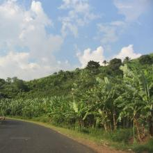 Roadway in Burundi. Photo by Janelle Tupper / Sojourners