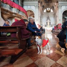 Owners with their dogs attend a blessing of pets and animals.(Photo by Marco Sec